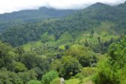 Boquete, The Highlands of Panama-705