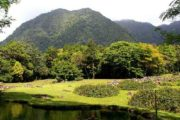 El Valle Country hiking or birding tour-458
