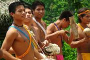 Indigenous Encounter in Chagres National Park -470