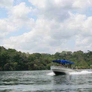 Jungle Boat Tour and Hiking the Soberania National Park -829