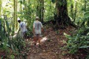 Rainforest & Ruins of Panama City-442