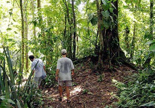 Rainforest & Ruins of Panama City-443