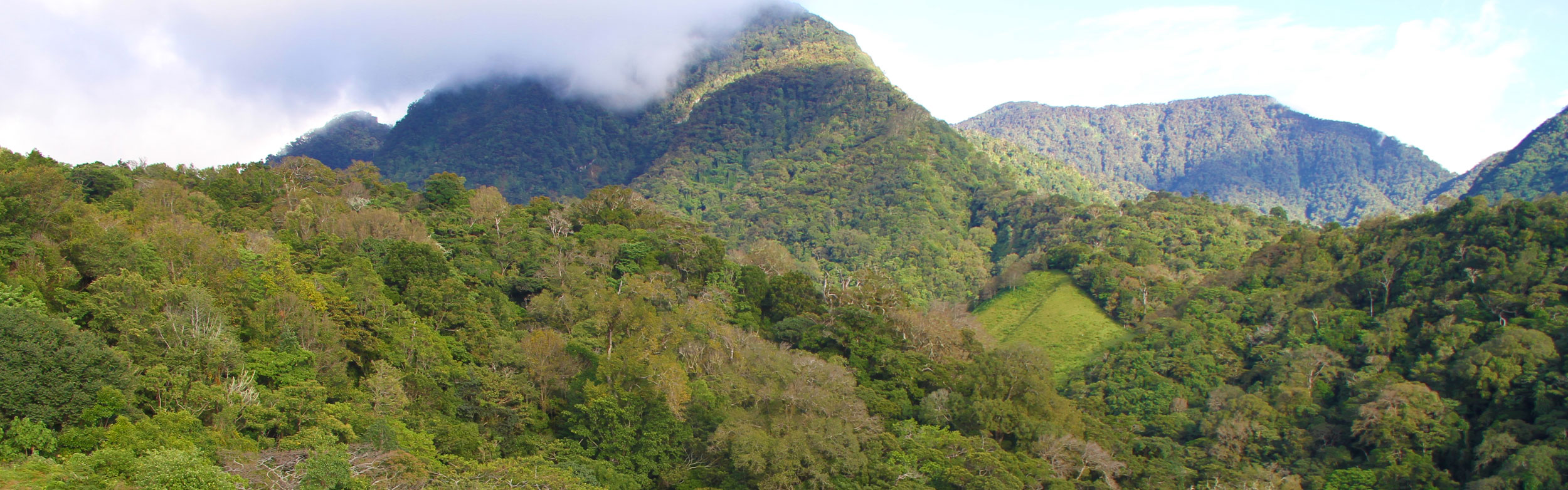 Mount Totumas Cloud Forest Lodge