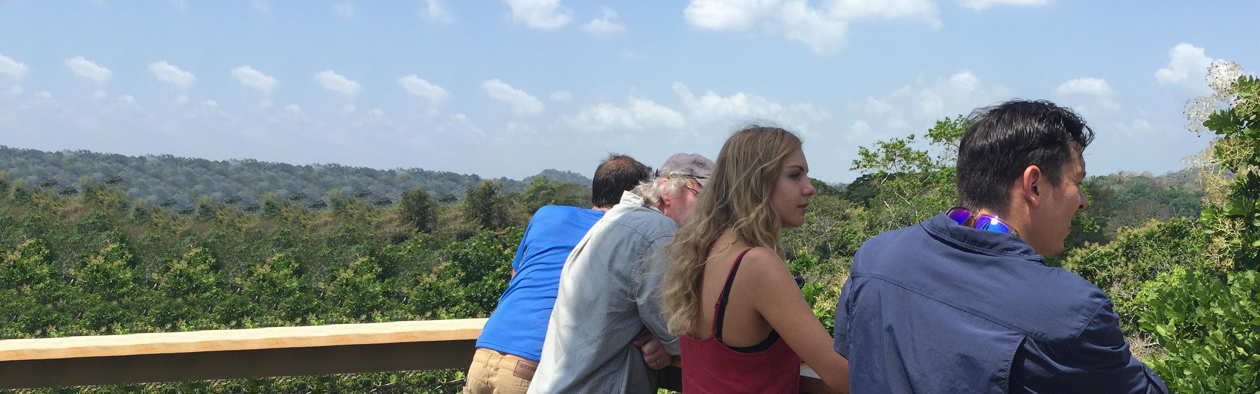 Rainforest Discovery Center & Soberania National Park