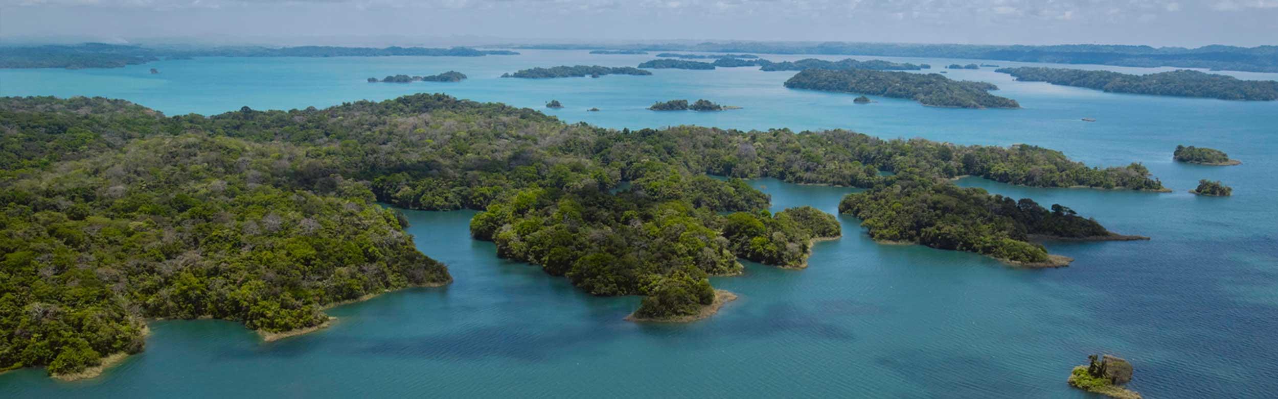 Birding Achiote Road: Atlantic Side of Panama