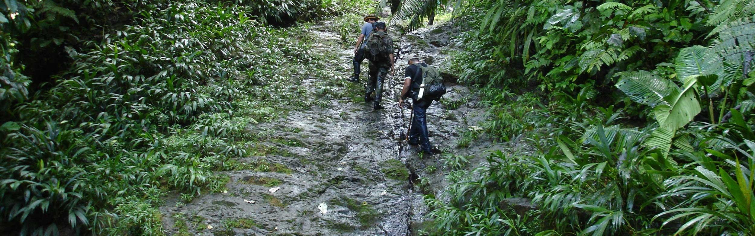 4 day Trekking Camino Real